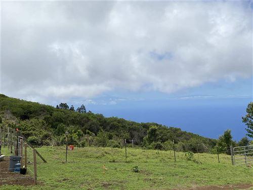 Photo of 2239 Upper Kanaio Rd, Kula, HI 96793 (MLS # 389936)