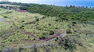 Photo of 0 Kehalea Pl, Lahaina, HI 96761 (MLS # 376946)