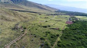 Photo of 0 Kehalea Pl, Lahaina, HI 96761 (MLS # 376947)