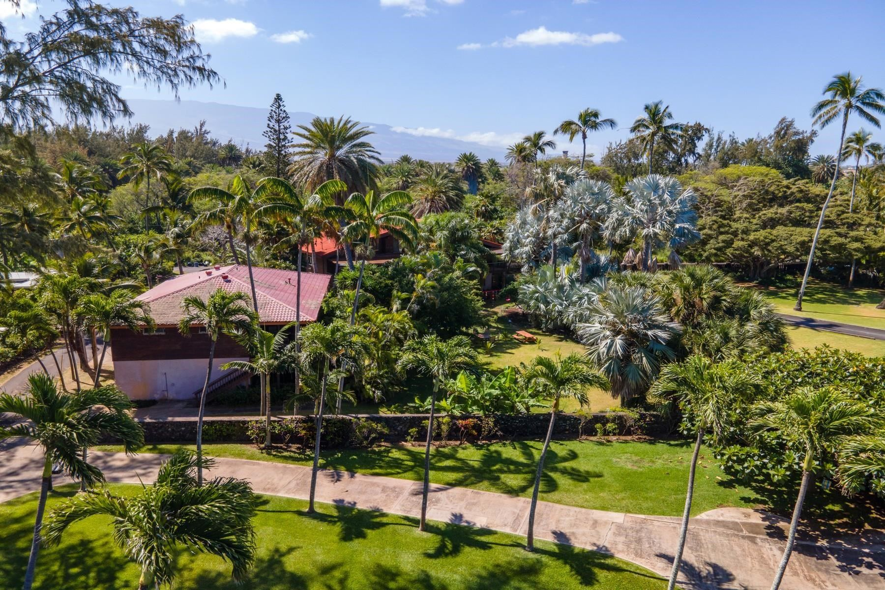 Photo of 590 Stable Rd #C & D, Paia, HI 96779 (MLS # 392951)