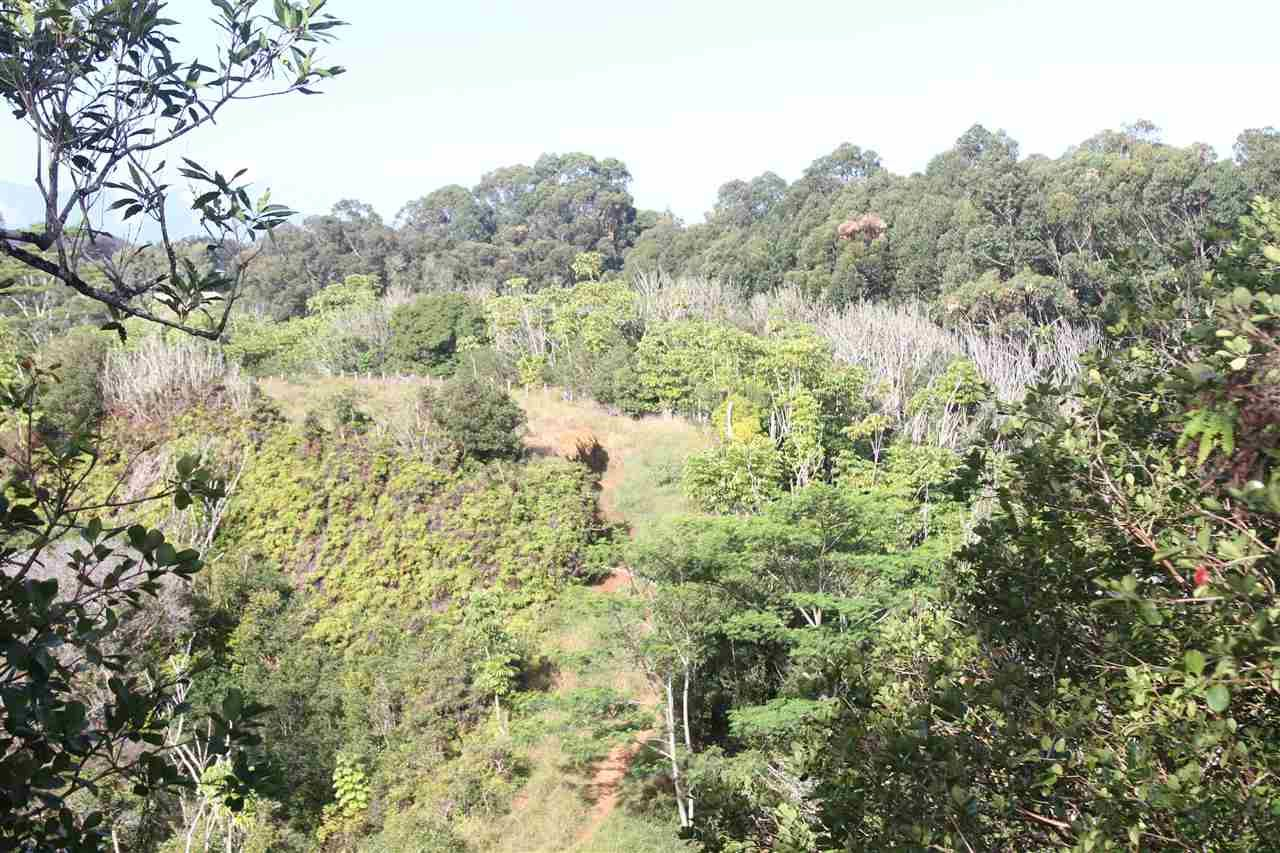 Photo of 1086 Upper Ulumalu Rd, Haiku, HI 96708 (MLS # 385961)