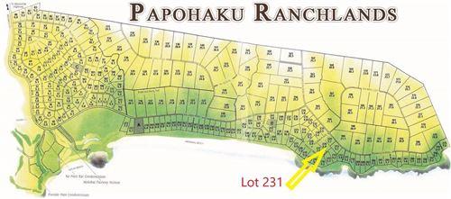 Photo of 4040 Pohakuloa Rd, Maunaloa, HI 96770 (MLS # 391970)