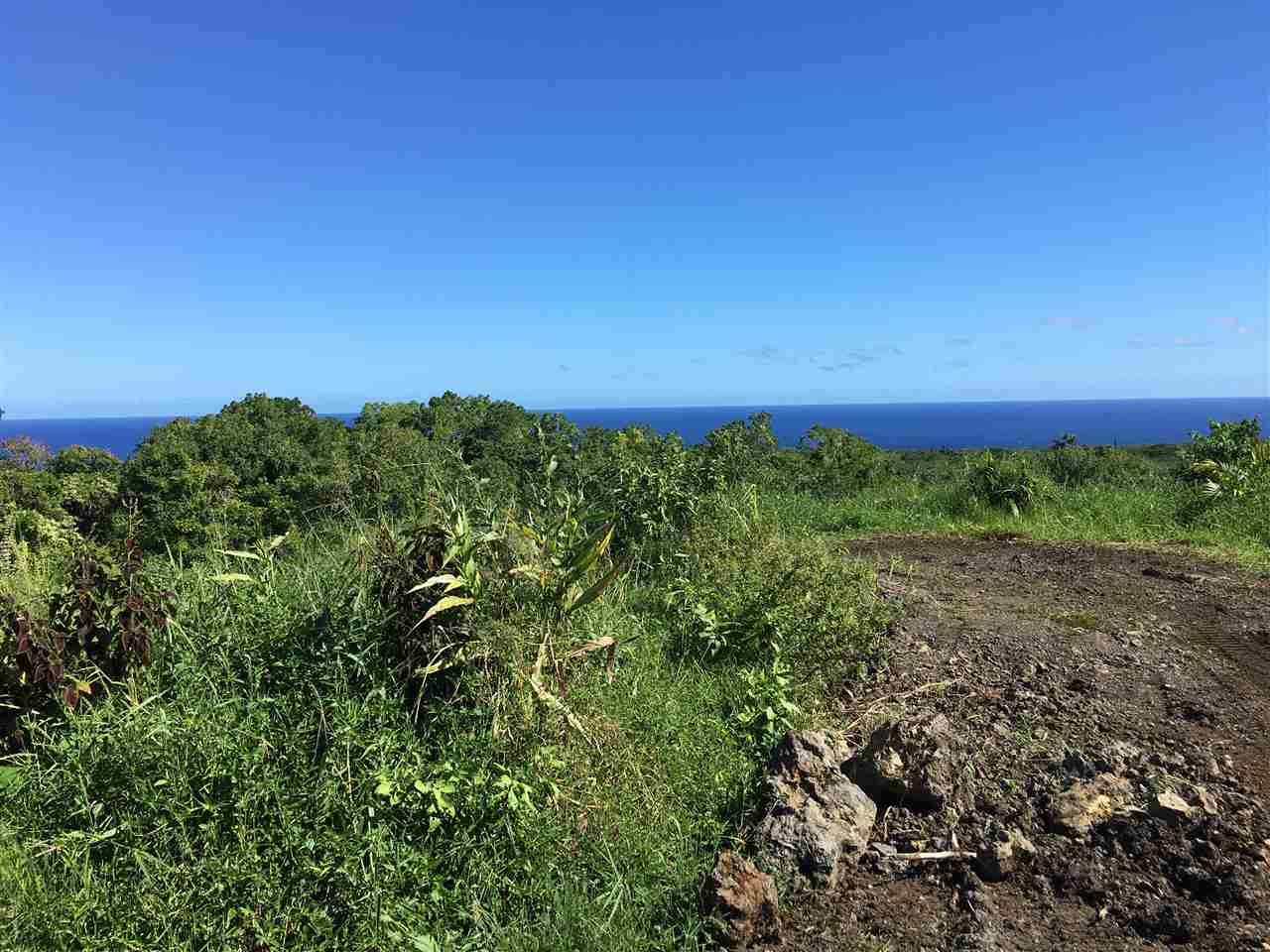 Photo of 2473 Hana Hwy, Hana, HI 96713 (MLS # 388995)