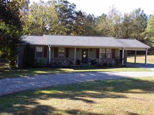Photo of 1035 PREACHER DR, Counce, TN 38326 (MLS # 10065246)