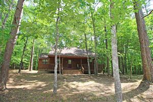Photo of 820 SLATE ROCK DR, Counce, TN 38326 (MLS # 10053268)