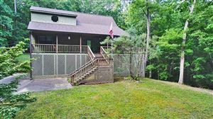 Photo of 225 MURRAY LN, Counce, TN 38326 (MLS # 10055662)