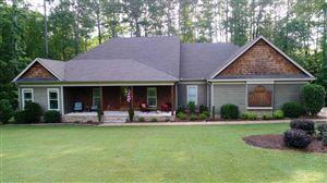 Photo of 735 SANDPIPER PT, Counce, TN 38326 (MLS # 10055679)