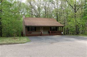 Photo of 60 BEN LUKE LN, Counce, TN 38326 (MLS # 10045704)