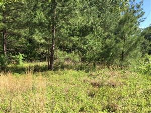 Photo of 5 PRICE RD, Unincorporated, TN 38057 (MLS # 10029747)