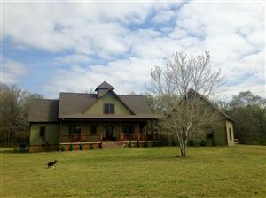 Photo of 165 DR. WILLIAMS DR, Michie, TN 38357 (MLS # 10024838)