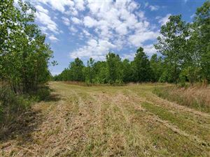 Photo of 0 ARMSTRONG RD, Unincorporated, TN 38023 (MLS # 10038868)