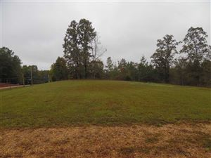 Photo of 560 MORRIS RD, Savannah, TN 38372 (MLS # 10038882)
