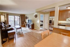 Photo of 1108 N Milwaukee St #233, Milwaukee, WI 53202 (MLS # 1663372)