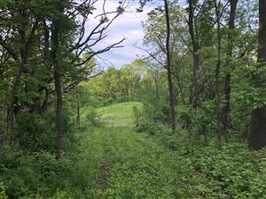 Photo of 5715 Buena Park Rd #Lt35, Waterford, WI 53185 (MLS # 1622400)