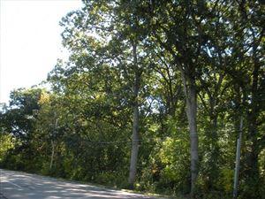 Photo of Lt1 Camp Lake Rd, Salem, WI 53168 (MLS # 1663446)