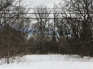 Photo of 3940 Lilly Rd, Brookfield, WI 53005 (MLS # 1654459)
