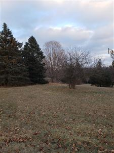 Photo of LT1 Blueberry RD, Addison, WI 53002 (MLS # 1618750)