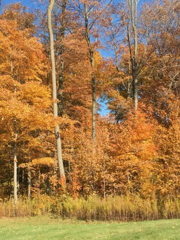 Photo of Lot 1 Westminster Ct., West Bend, WI 53095 (MLS # 1616900)