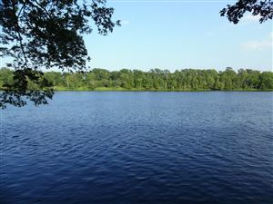Photo of 4.96 Acres Cottage Ln, Wagner, WI 54177 (MLS # 1648913)