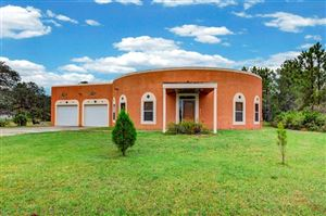 Photo of 45205 STATE ROAD 64 E, MYAKKA CITY, FL 34251 (MLS # A4416002)