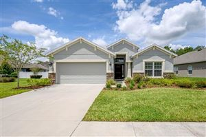 Photo of 6415 BRADFORD HILL COURT, WESLEY CHAPEL, FL 33545 (MLS # T3194023)