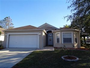 Photo of 4501 ARIZONA SUN CT, VALRICO, FL 33594 (MLS # T2919029)