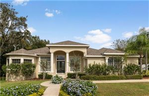 Photo of 702 HAMILTON PLACE DRIVE, LAKELAND, FL 33813 (MLS # L4912036)