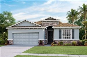 Main image for 8406 PRAISE DRIVE, TAMPA,FL33625. Photo 1 of 17