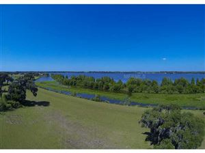 Main image for 10738 OSPREY LANDING LOT 55 WAY, THONOTOSASSA, FL  33592. Photo 1 of 25