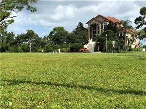 Photo of Lot 114 N POINTE ALEXIS DRIVE, TARPON SPRINGS, FL 34689 (MLS # T3122042)