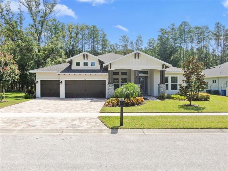 4006 COVE LAKE PLACE, Land O Lakes, FL 34639 - #: T3251043