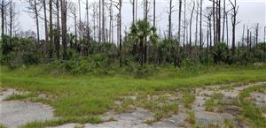 Photo of COPERNICUS ROAD, NORTH PORT, FL 34288 (MLS # C7403046)