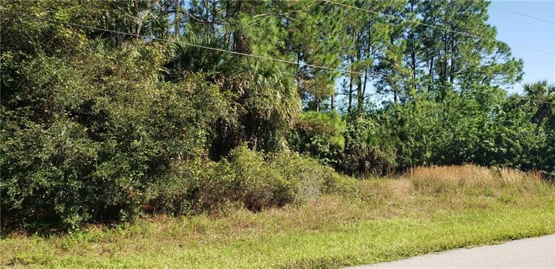 Photo of GRANDVIEW DRIVE, NORTH PORT, FL 34288 (MLS # A4482046)