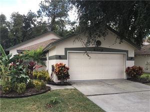 Main image for 6043 PARKVIEW POINT DRIVE, ORLANDO, FL  32821. Photo 1 of 27