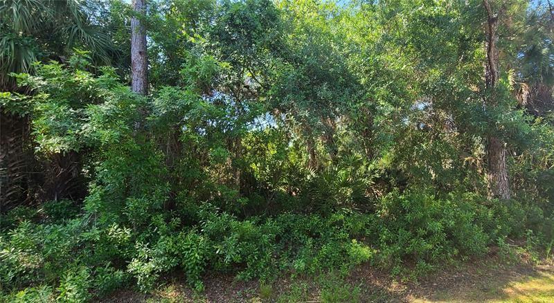 Photo of SUNBURST AVENUE, NORTH PORT, FL 34286 (MLS # C7442047)