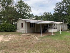 Photo of 5246 GALLIVER CTO, BAKER, FL 32531 (MLS # T3192055)