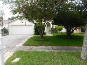 Photo of 13112 ROYAL GEORGE AVENUE, ODESSA, FL 33556 (MLS # U8058061)