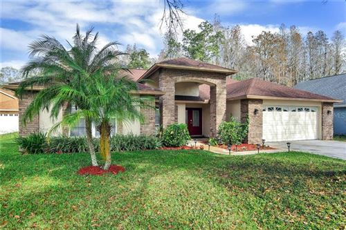 Photo of 6715 FRONTIER LANE, TAMPA, FL 33625 (MLS # T3221064)