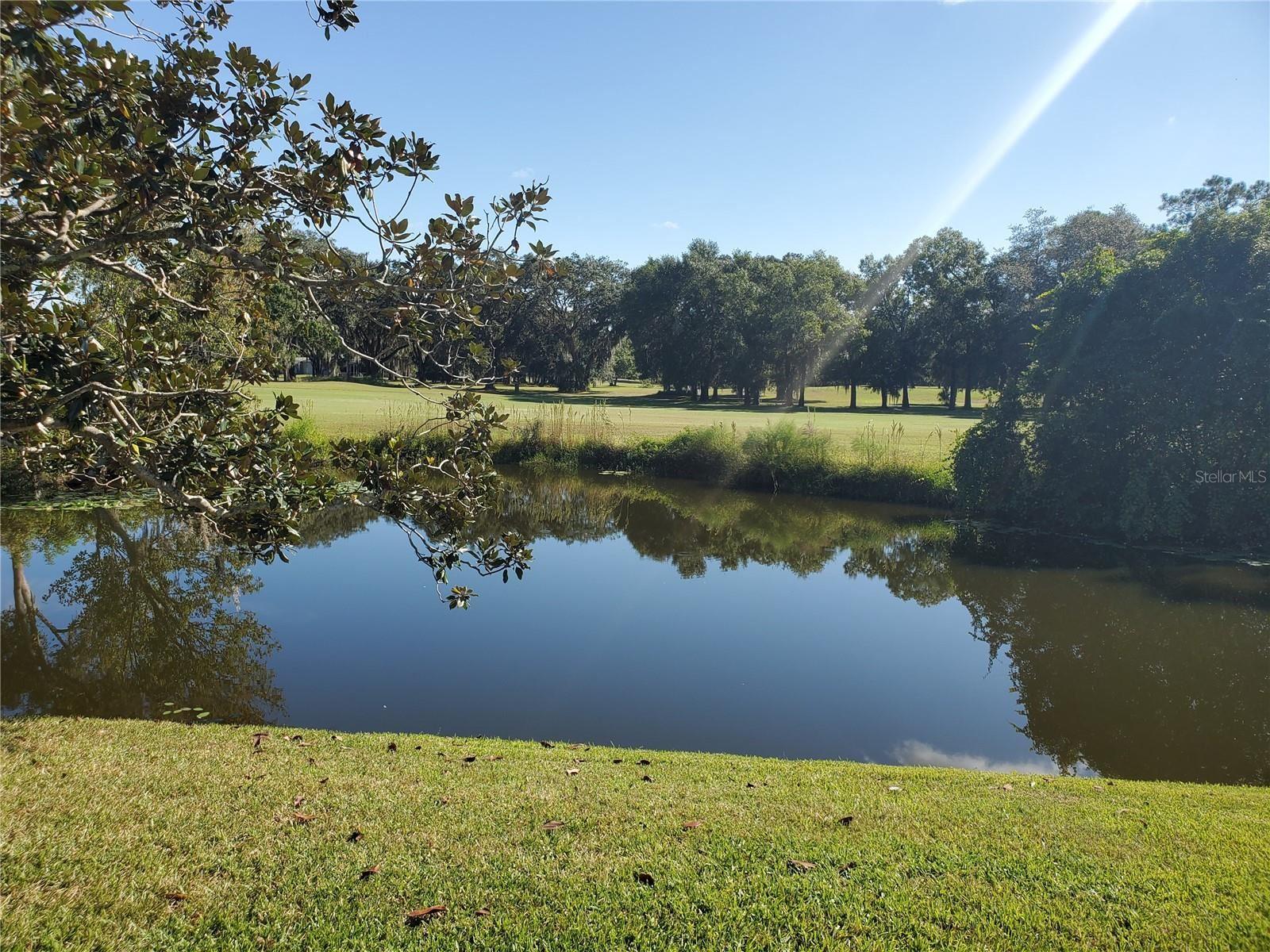 Photo of 1720 PALMER COURT, PALM HARBOR, FL 34685 (MLS # W7839067)