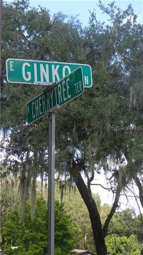 Photo of 6500 N CHERRYTREE TERRACE, HERNANDO, FL 34442 (MLS # U8129070)