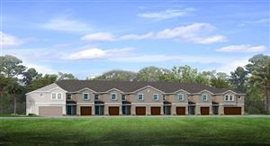 Main image for 18601 NOBLE CASPIAN DRIVE, LUTZ,FL33548. Photo 1 of 15