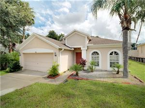 Photo of 735 GRAND CANYON DRIVE, VALRICO, FL 33594 (MLS # T3194077)
