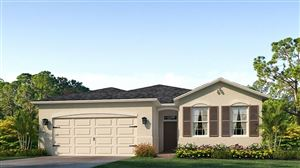 Photo of 4130 MOSSY LIMB COURT, PALMETTO, FL 34221 (MLS # T3211082)