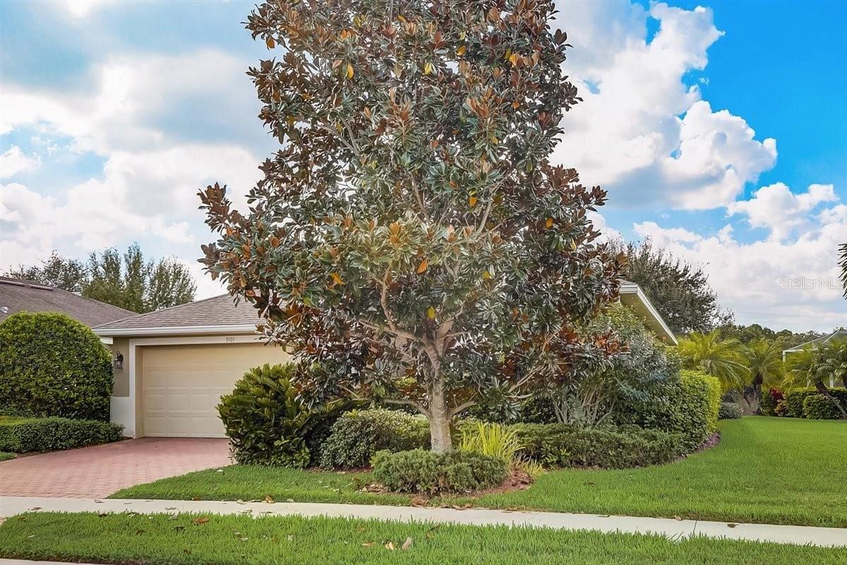 Photo of 9101 COACHMAN DRIVE, VENICE, FL 34293 (MLS # A4515087)
