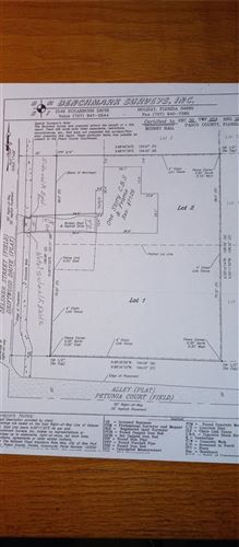 Photo of 7116 OELSNER STREET, NEW PORT RICHEY, FL 34652 (MLS # W7839089)