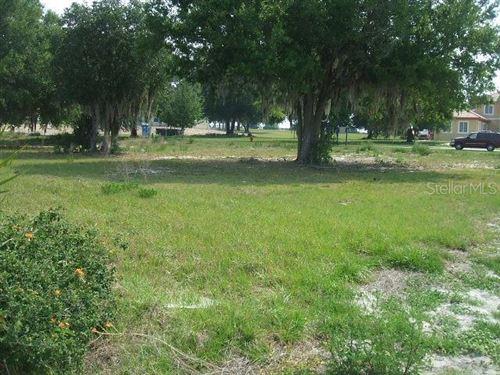 Photo of 10525 BROADLAND PASS, THONOTOSASSA, FL 33592 (MLS # A4477094)