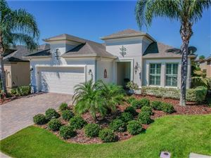 Photo of 1038 TIMBERVALE TRAIL, CLERMONT, FL 34715 (MLS # G5016105)