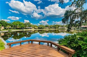 Photo of 1713 MAGDALENE MANOR DRIVE, TAMPA, FL 33613 (MLS # T3176108)