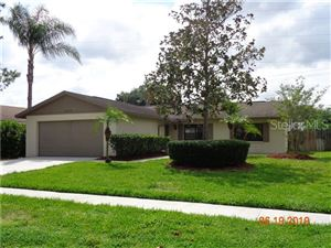 Photo of 16026 EAGLE RIVER WAY, TAMPA, FL 33624 (MLS # T3181109)