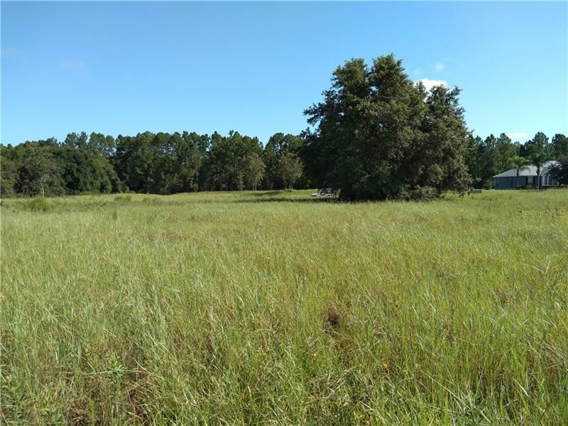 Photo of GREENGROVE LOT#103 BOULEVARD, CLERMONT, FL 34714 (MLS # G5032111)